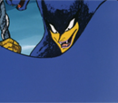 Panther Zora (TV)