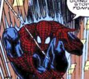 Peter Parker (Earth-11993)