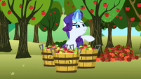Rarity lovely S2E15