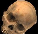 Schädel (Halo 2)