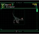 Oviraptor (Archivo)