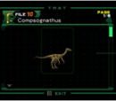 Compsognathus (Archivo)