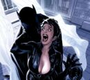 Catwoman Vol 3 45/Images
