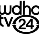 WNWO-TV