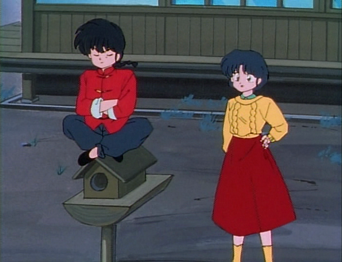 akane and ranma relationship questions