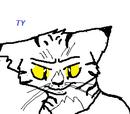 Battyrap101/wild cat