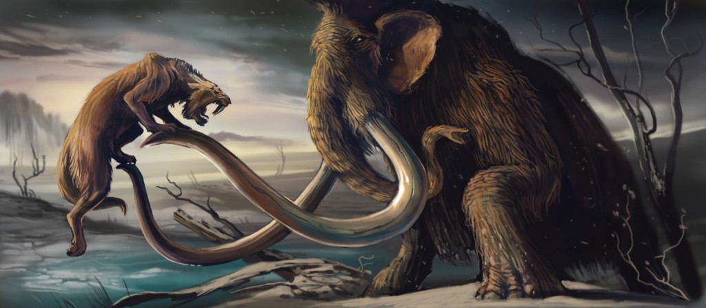 Mamut E X moreover Mamoth Sabre X additionally  besides Ivory Ky moreover Difference Mammoth Mastodon Orig. on animal mammoth x