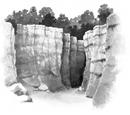 Schlucht (Wald)