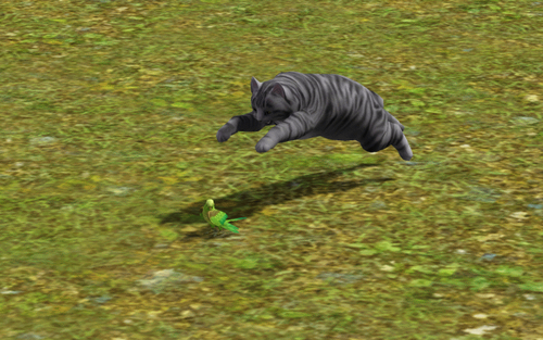 jogo gnomo de jardim : jogo gnomo de jardim:Arquivo:Gato caçando.png – The Sims Wiki – Wikia
