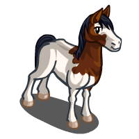 Abaco Barb Horse Farmville Wiki Seeds Animals