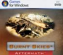 Burnt Skies