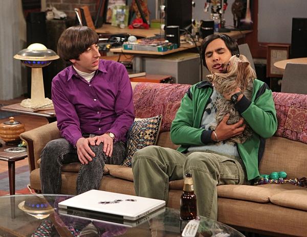 Big Bang Theory Raj Dog Name