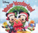 Disney Winter Wonderland 2010
