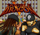 Double Dragon V The Shadow Falls