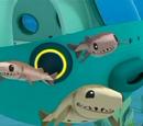 Cookiecutter Sharks