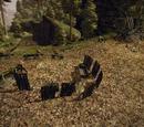 Obóz drwali koło Silden