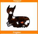 Palepelt (Up for Adoption)