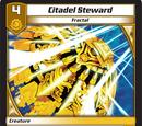 Citadel Steward