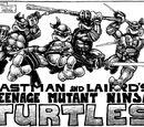 Ninja Turtles (Mirage)