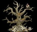 Raider's Victory Tree