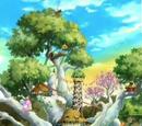 Hamha Tree