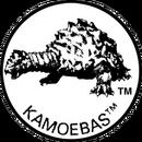 Kamoebas