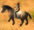 Ruunikko (ratsu)