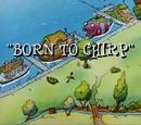 Born to Chirp