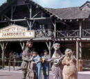 Country Bear Costumes Through the Years