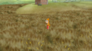 Standing in a wheat field.png