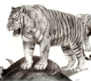 Panthera tigris soloensis