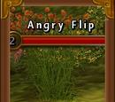 Angry Flip