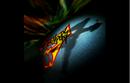 Fighters Megamix C3.png