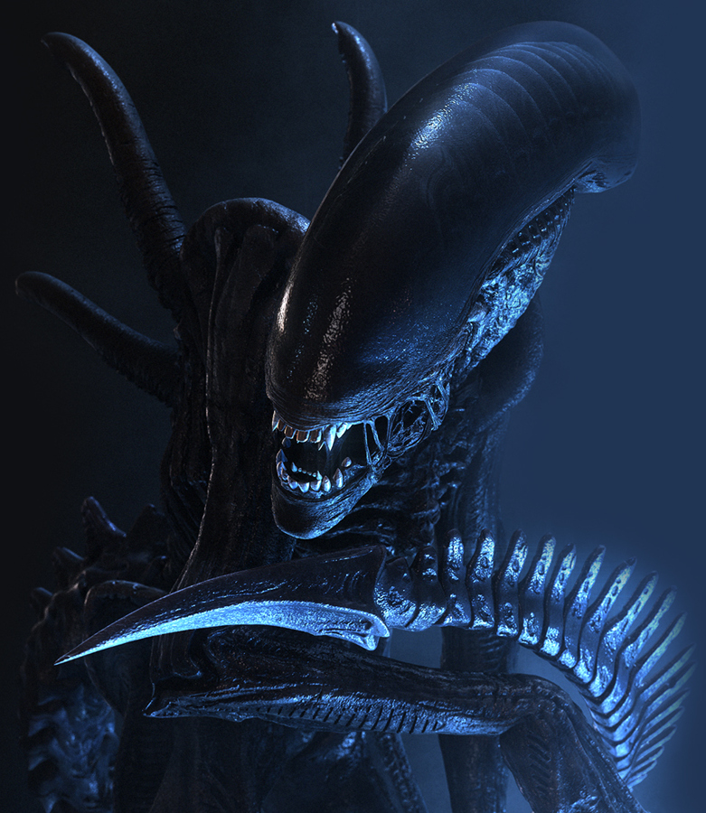 how to draw a xenomorph drone