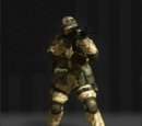 Kits of Battlefield 2: Modern Combat