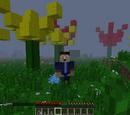 ILIKESWORDZ/Biomes a plenty mod