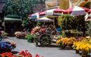FlowerMarket.png