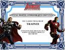 UL MAA Certificate Trainee.jpg