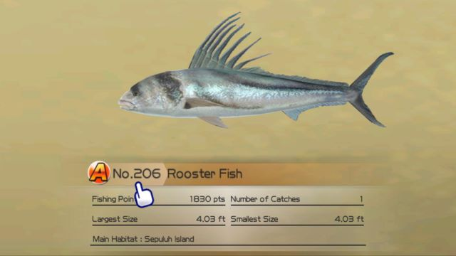 Rooster fish wii fishing resort wiki for Fishing resort wii