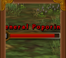 General Poporing