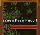 Green Pecopeco Baby