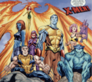 X-Men (Earth-523004) from What If Magneto Had Formed the X-Men With Professor X Vol 1 1 0001.png