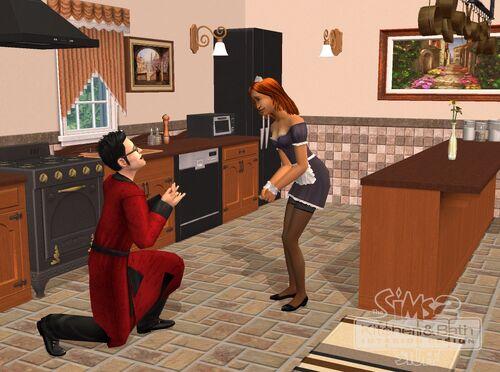 The sims 2 kitchen bath interior design stuff the for Sims 2 kitchen ideas