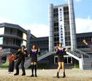 Sakura Schoolyard