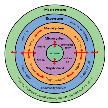 Bronfenbrenner s bioecological theory