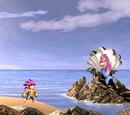 The Mermaid's Singing Rock