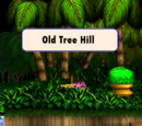 Old Tree Hill