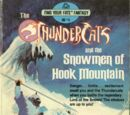 The Snowmen of Hook Mountain (Book)