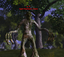 Aged Maplelynn Treant