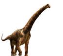 Futalognkyosaurus